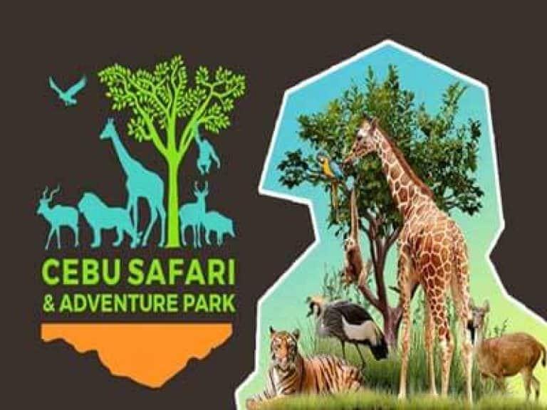cebu safari tour